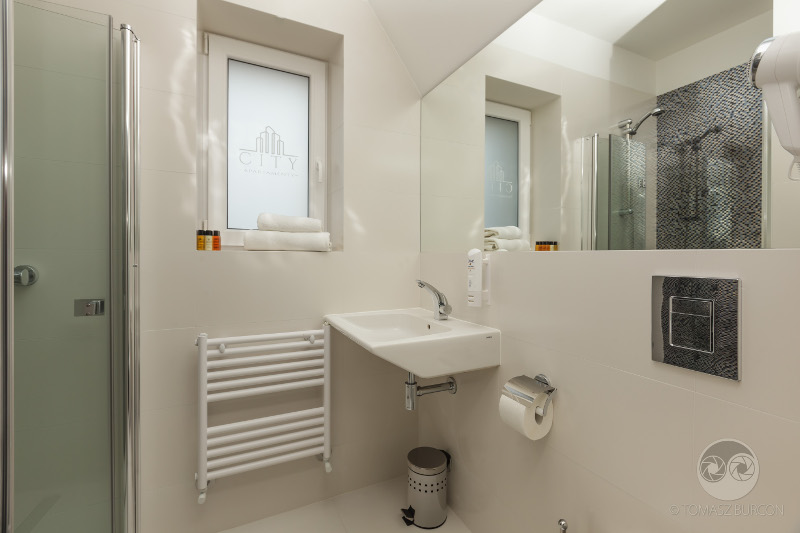 Apartment Skandynawski